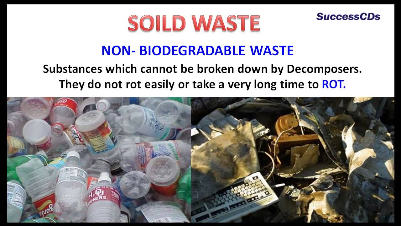 What are biodegradable and nonbiodegrable substances?