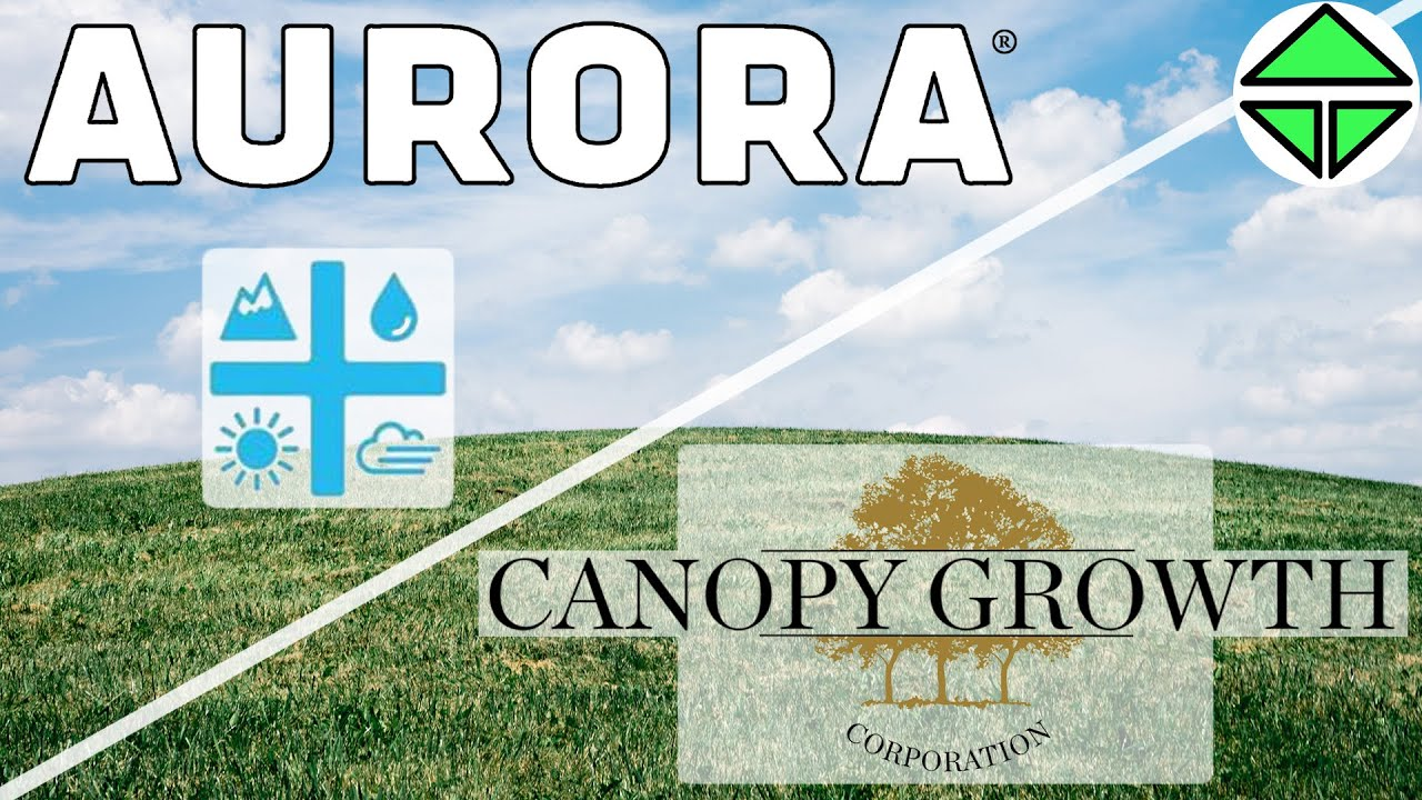 Part 2 Canopy Growth And Aurora Cannabis Differences Speculations