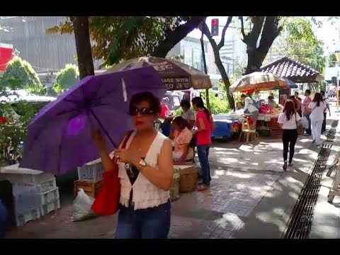 Philippines LIVE - Cebu City Walk & Talk Capitol Site Live Stream