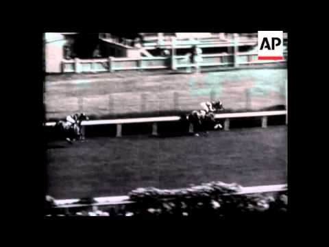 Pharlap Wins Melbourne Cup