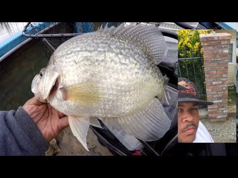 Caught Some Slabs While Crappie Fishing! Building Brick Columns/Piers!