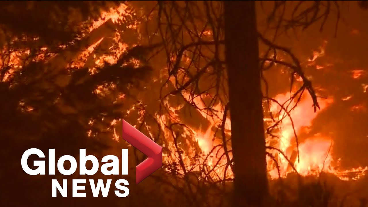 Download California's Dixie Fire continues to grow into 13th largest wildfire in state history