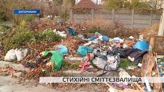 Стихійні сміттєзвалища