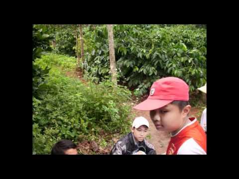 Lớp 9/5 THCS.Nguyễn Văn Cừ - Pleiku Gia Lai