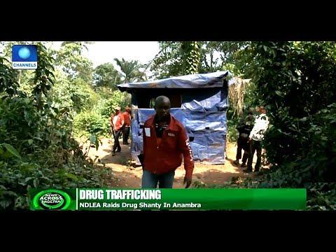 NDLEA Raids Drug Shanty In Anambra