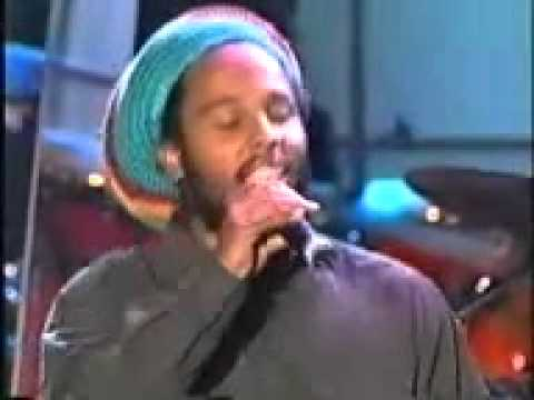 Mother & Child Reunion - Ziggy Marley
