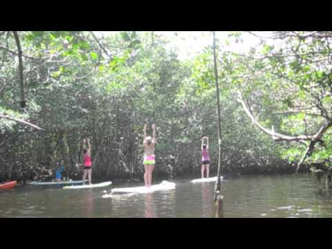 Yoga Paddle Boarding - Matheson Hammock Park, Coral Gables, FL