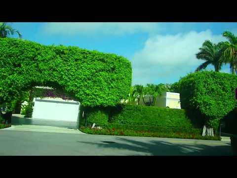 🔴 ВЫ ТАКОГО НЕ ВИДЕЛИ 🔴 Landscaping West Palm beach Florida USA 07.05.2017
