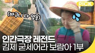 [인간극장 레전드] 김제 농부언니 농알못(?) 시절?! 굳세어라 보람 1부   재미 PICK   KBS 방송
