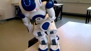 Nao Robot - Fighting