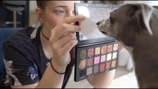 Download My Dogs Pick My Makeup Mp3 and Videos