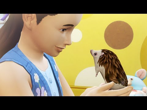 The Sims 4: My First Pet Stuff - Overview