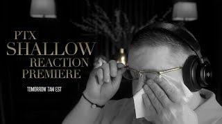 "Cover images Pentatonix Reaction | ""Shallow"""