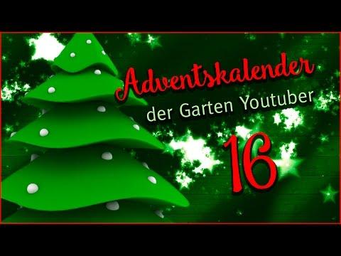 Tür 16 des Adventskalenders der Garten - Youtuber