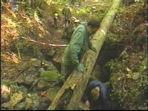 tropfsteinhöhle steinau