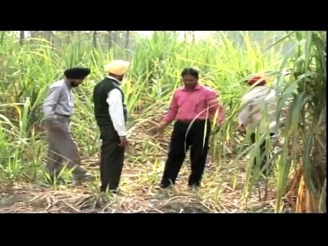 Unnat Kheti/Unnat Kisan (Indian Agriculture show ) Episode 1 :  Rajinder Sahota ,Progressive farmer