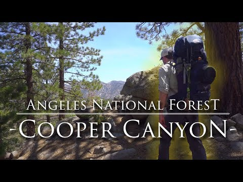 Cooper Canyon | Angeles National Forest Hiking and Backpacking near Los Angeles