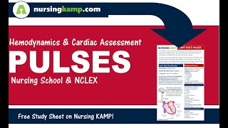 What are Pulses in Cardiac Assessment Nursing KAMP NCLEX 2019 pardoxus pulsus