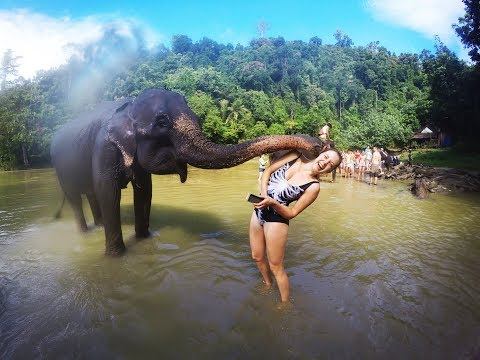 No trekking; only LOVING!  [SUMATRA INDONESIA DAY 4]