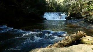 Relaxing HD Nature 4 (Dick