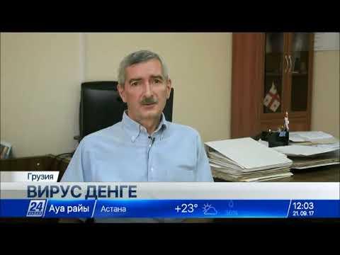 Лихорадка денге зафиксирована в Грузии