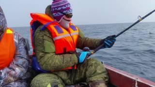 Gambar cover Выкачиваем треску на Баренцевом море