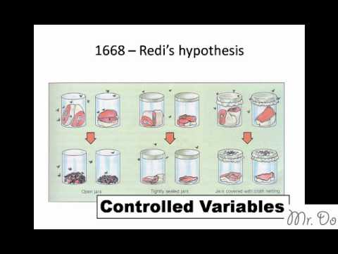 francesco redi the scientific method