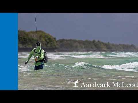 Saltwater Fly Fishing (A Quickstart Guide) - Fly Fisher Pro