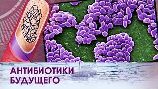 Почему не помогают антибиотики?