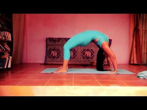 Йога для начинающих — видео уроки онлайн, смотрите