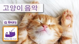 12 Hours of Cat Music - Sleep Music for Cats