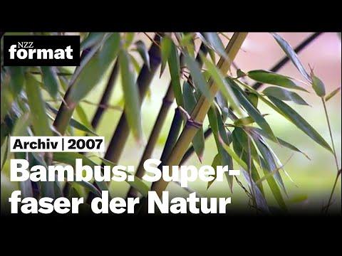 Bambus: Superfaser der Natur - Dokumentation von NZZ Format (2007)