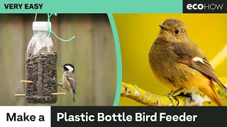 Bird feeders are an incredible way to get a close look at birds. There are plenty of bird feeders available to buy, but you can save