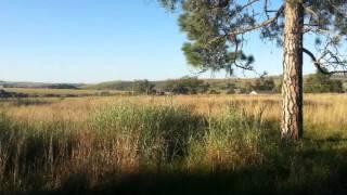 Vacant Land For Sale in Oak Tree AH, Krugersdorp, South Africa for ZAR R 1 150 000