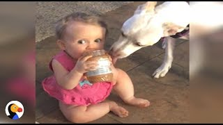 Mom Catches Dog and Baby Sharing Peanut Butter | The Dodo