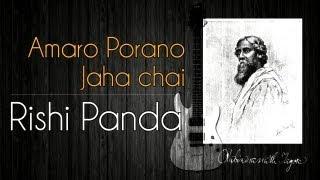 Amaro Porano Jaha Chai - Rabindrasangeet - Instrumental - Rishi Panda