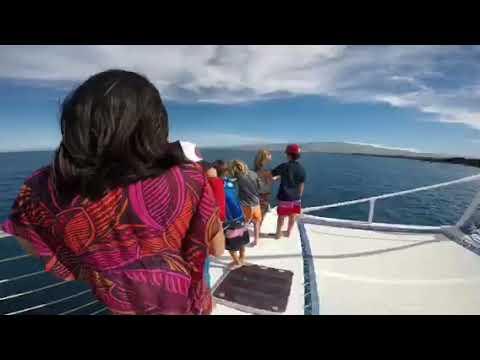 Spirit Of Aloha Catamaran, Sailing Daily At Waikoloa On The Kona-Kohala Coast