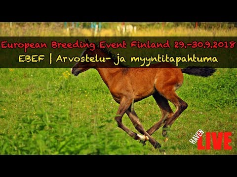 🔴 LIVE | LA | European Breeding Event Finland  | 29.-30.9.2018 | 1/2