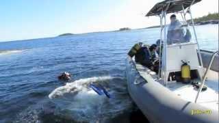 видео Базы отдыха на белом море летом