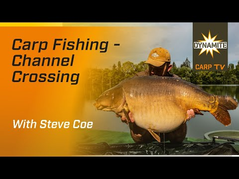 Carp Fishing: Channel Crossing