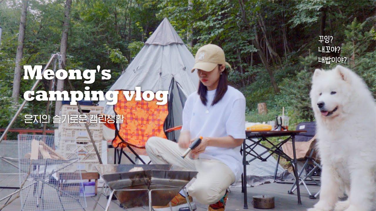 [V-log] 댕댕이들(?)의 '첫' 캠핑 도전기 🏕