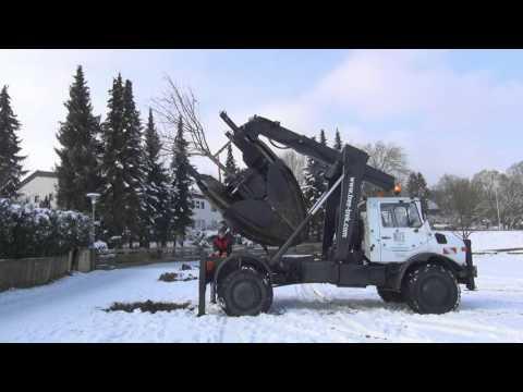 Cornel Wilde GmbH - Baumverpflanzung Großbaumverpflanzung international ZW2000