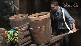 《我的美丽乡村》 20210104 古窑燃起新希望|CCTV农业 - YouTube