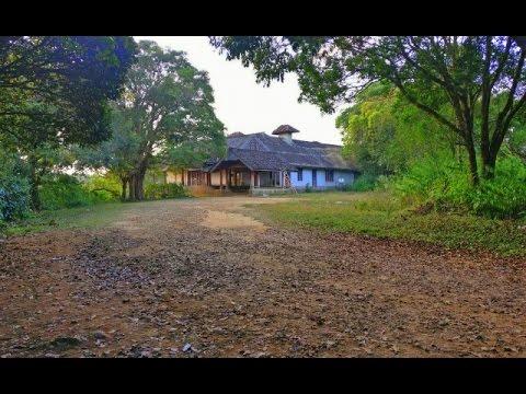 അമ്മച്ചിക്കോട്ട എന്ന പ്രേത കൊട്ടാരം IAmmachi Kottaram | Ghost palace
