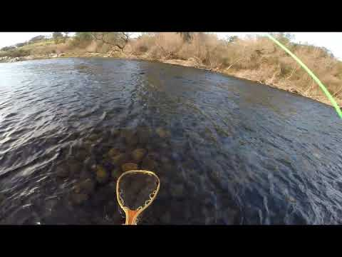 Fly Fishing On The Tuolumne River, 021520