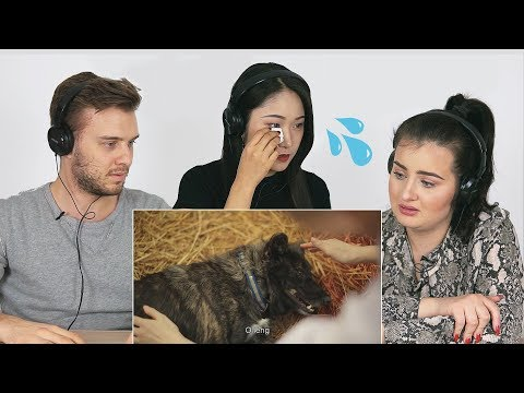Foreigners React to Sad Thai commercial | Growing together
