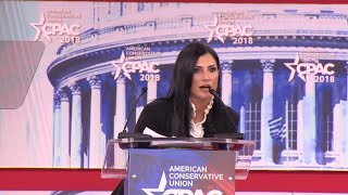 Who Is Dana Loesch, the 39-Year-Old NRA National Spokeswoman?