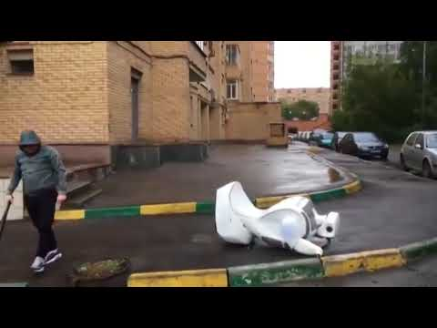 Traffic Control Robot in Moscow