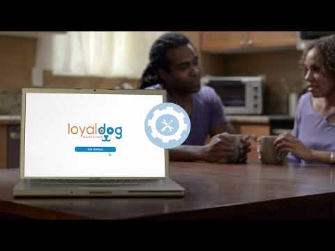 Loyal Dog Marketing: Services