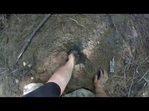 Finding water in the Arizona desert